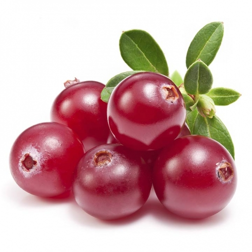3721-19-Amazing-Benefits-Of-Cranberries-For-Skin-Hair-Health