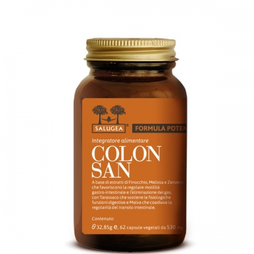 Colonsan-Salugea