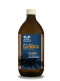 Succo-di-Sambuco-Salugea
