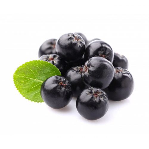 purple-aronia-extract-powder